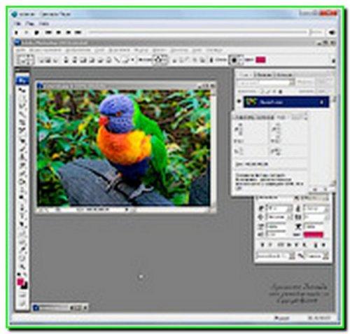 Фотошоп для дизайнерів