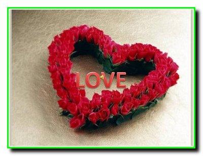 365 + 1 правило справжньої любові. Частина 19