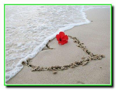 365 + 1 правило справжньої любові. Частина 33