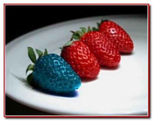 ГМО викликає рак