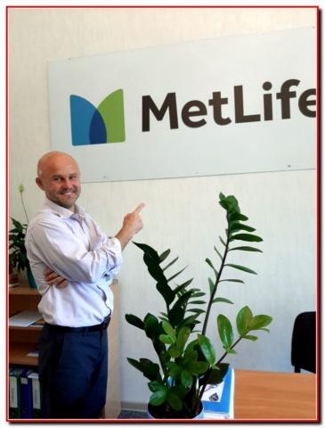 Ваше будущее с MetLife/МетЛайф